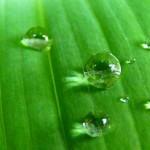 Víz a háztartásban, spórolás tippek